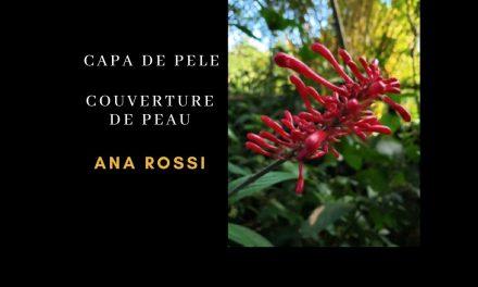 CAPA DE PELE   COUVERTURE DE PEAU