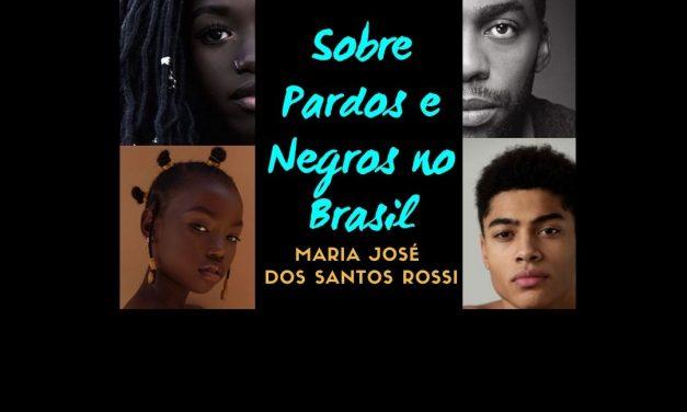 Sobre Pardos e Negros no Brasil